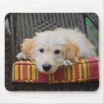 Cute Golden Doodle Puppy Mousepad