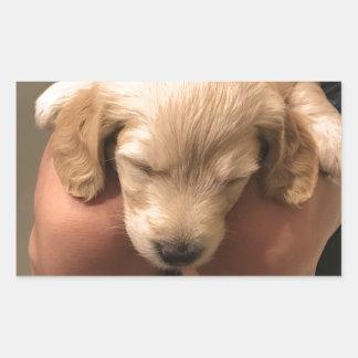 Cute Golden Doodle Retriever Sleeping Puppy Pup Rectangular Sticker