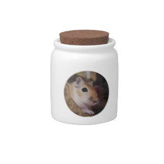 Cute Golden Pet Gerbil Candy Jar