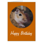 Cute Golden Pet Gerbil Card