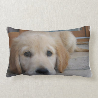 Cute Golden Pup Lumbar Pillow