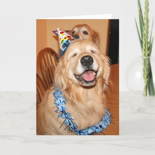 Cute Golden Retriever Birthday Wishes Card Zazzle Com