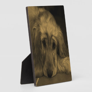 Cute Golden Retriever Dog Laying Down Plaque