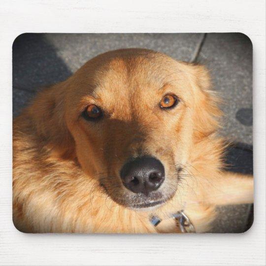 Cute Golden Retriever Dog Mouse Pad