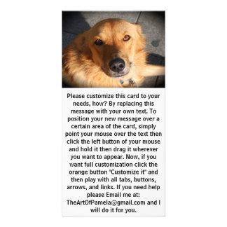 Cute Golden Retriever Dog Photo Cards