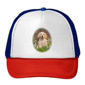 Cute Golden Retriever Dog Puppy Portrait Photo cap