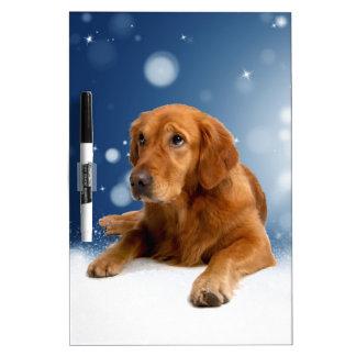 Cute Golden Retriever Dog Sitting in Snow Stars Dry Erase Board