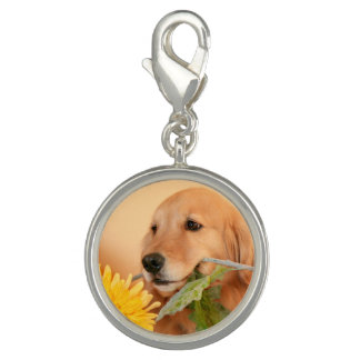 Cute Golden Retriever Dog With Yellow Flower Charms