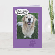 Cute Golden Retriever Mother's Day Card