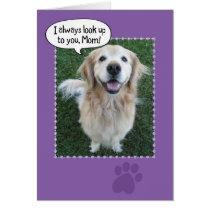 Cute Golden Retriever Mother's Day Card