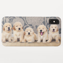 Cute Golden Retriever Puppy Dog iPhone XS Max Case