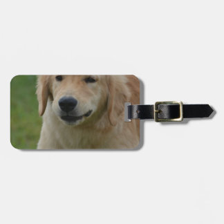 Cute Golden Retriever Puppy Tag For Bags
