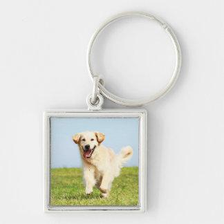 Cute Golden Retriever Puppy Running on Grass Keychain