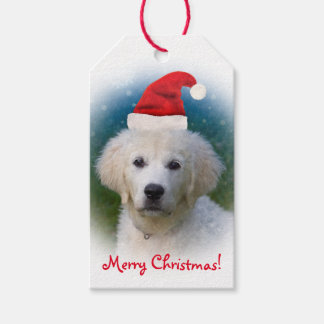 Cute Golden Retriever Puppy Wearing Santa Hat Gift Tags