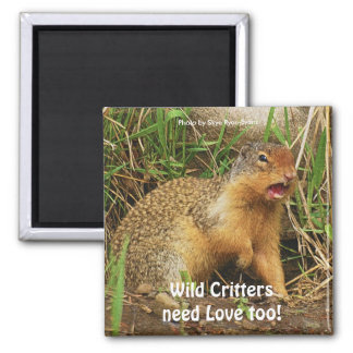 Cute Gopher Prairie-dogs Wildlife Magnets