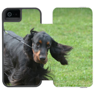 Cute Gordon Setter Wallet Case For iPhone SE/5/5s