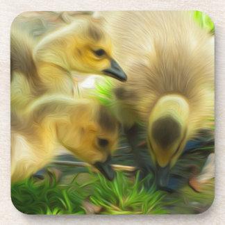 Cute Gosling Beverage Coasters