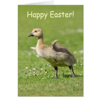 Cute Gosling Happy Easter Greeting Card