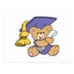 Cute Graduate Graduation Bear Postcard