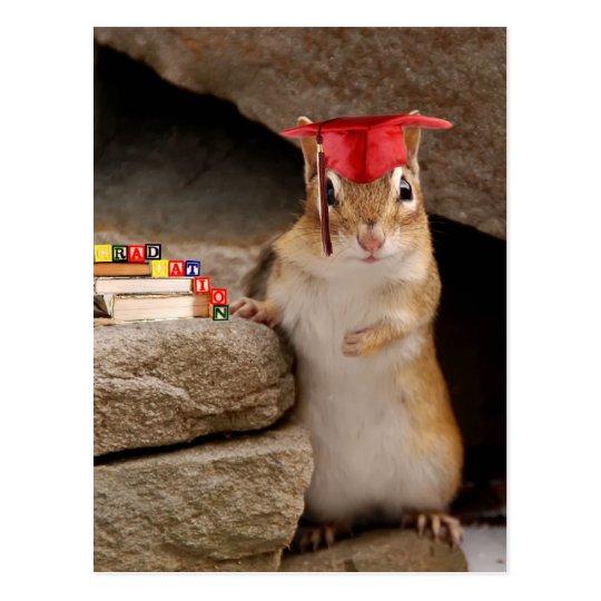 Cute Graduation Chipmunk Postcard