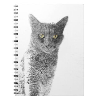 Cute Gray Cat Yellow Eyes Pet Notebook