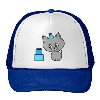Cute Gray Kitten in a Blue Birthday Hat.