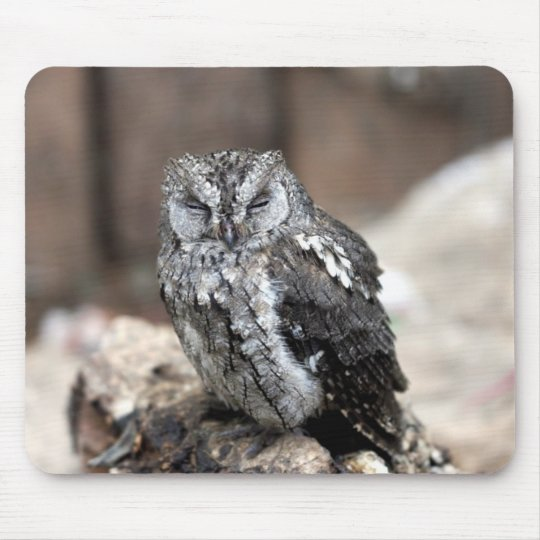 Cute Gray Owl Mouse Pad