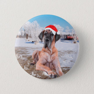 Cute Great Dane Dog Sitting In Snow Christmas Hat Pinback Button