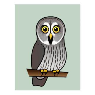 Cute Great Grey Owl Postcard