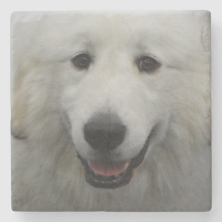 Cute Great White Pyrenees Stone Beverage Coaster