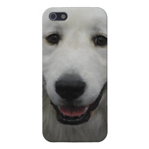 Cute Great White Pyrenees iPhone 5 Cover