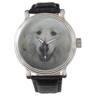 Cute Great White Pyrenees Watch