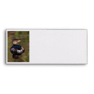 Cute Grebe Envelopes