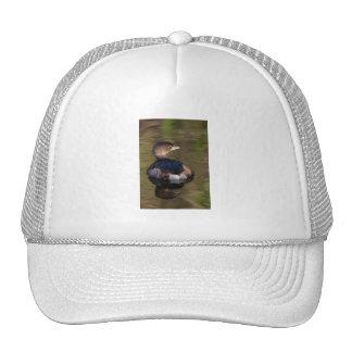 Cute Grebe Mesh Hat