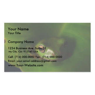 Cute Green Candid Frog Hiding In The Leaves Business Card Templates