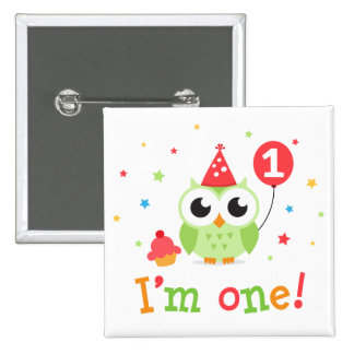 Cute green owl with balloon and cupcake I am one Pinback Button