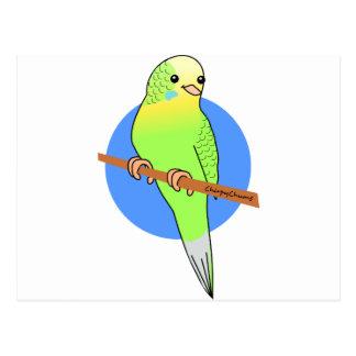 Cute Green Parakeet Postcard