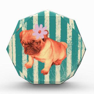 cute green retro stripes pug puppy award