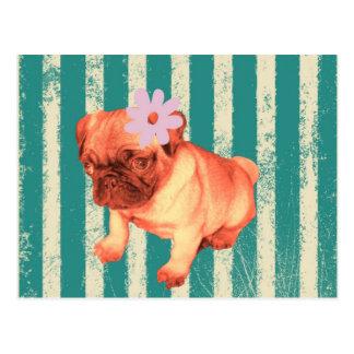 cute green retro stripes pug puppy fashionista postcard