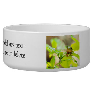 Cute Green Tree Frog Bowl