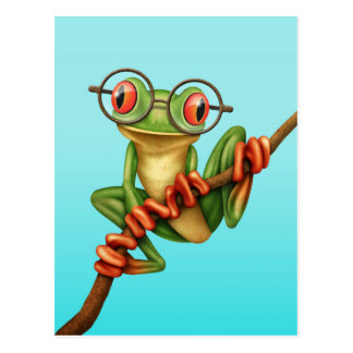 Cute Green Tree Frog with Eye Glasses on Blue Post Card