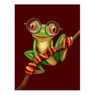 Cute Green Tree Frog with Eye Glasses on Red Post Card