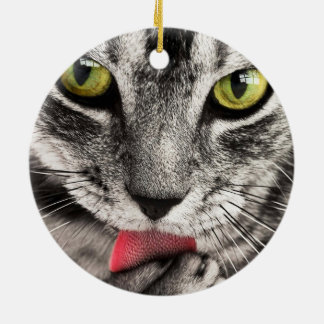 Cute grey cat licking paw ornaments