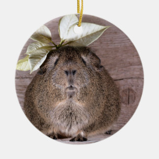 Cute Grey Guinea Pig Wearing a Leaf Hat Ceramic Ornament