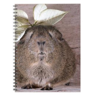 Cute Grey Guinea Pig Wearing a Leaf Hat Notebook