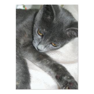 Cute Grey Kitten Relaxing 5.5x7.5 Paper Invitation Card