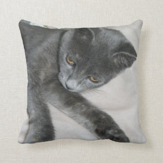 Cute Grey Kitten Relaxing Throw Pillow