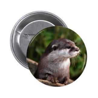 Cute grey otter pin