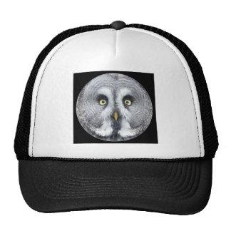 """""""Cute grey owl"""" Hat"""