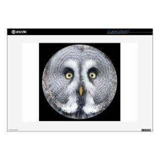 """Cute grey owl"" 15"" Laptop Skin"
